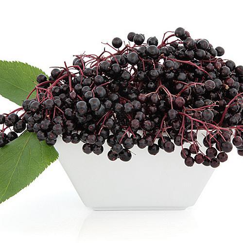 Aroma  Elderberry 10 ml