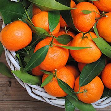 Aroma  Orange Mandarine 10 ml