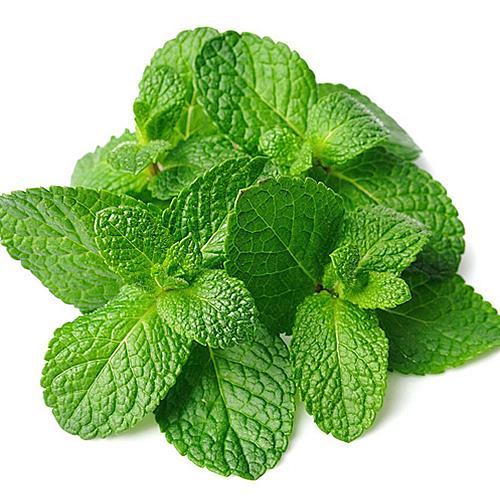 Aroma  Spearmint 10 ml